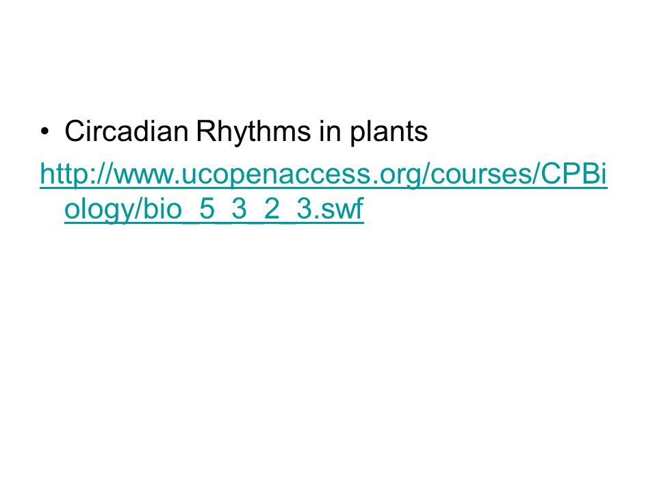 Circadian Rhythms in plants