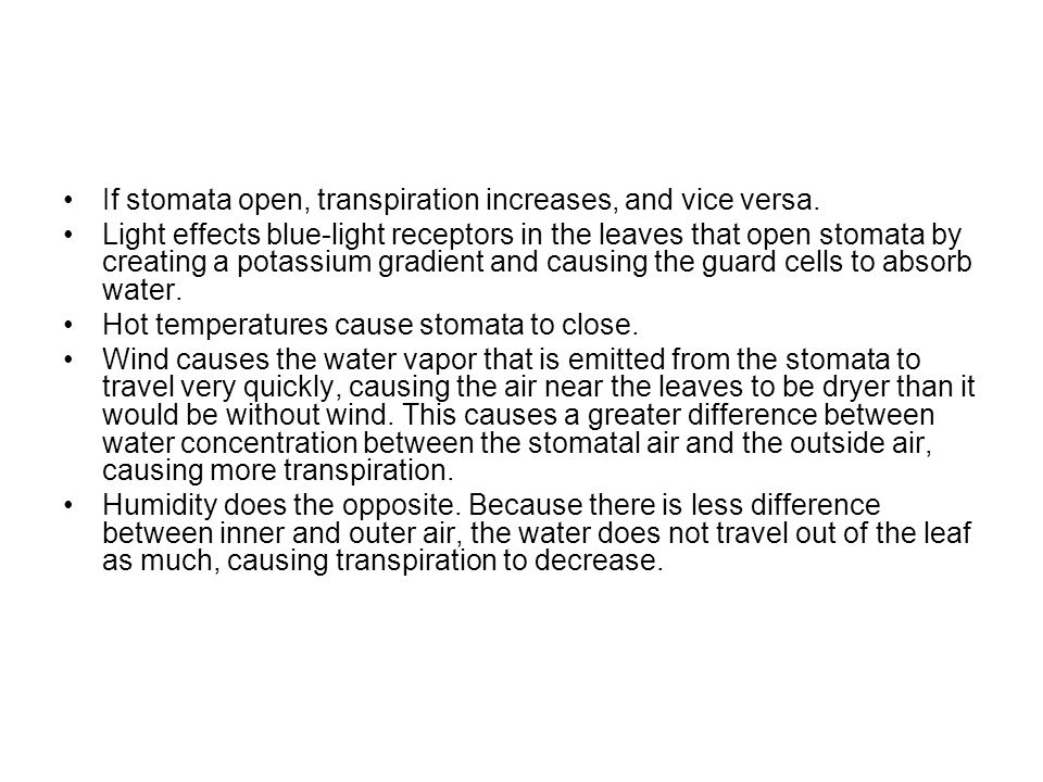 If stomata open, transpiration increases, and vice versa.