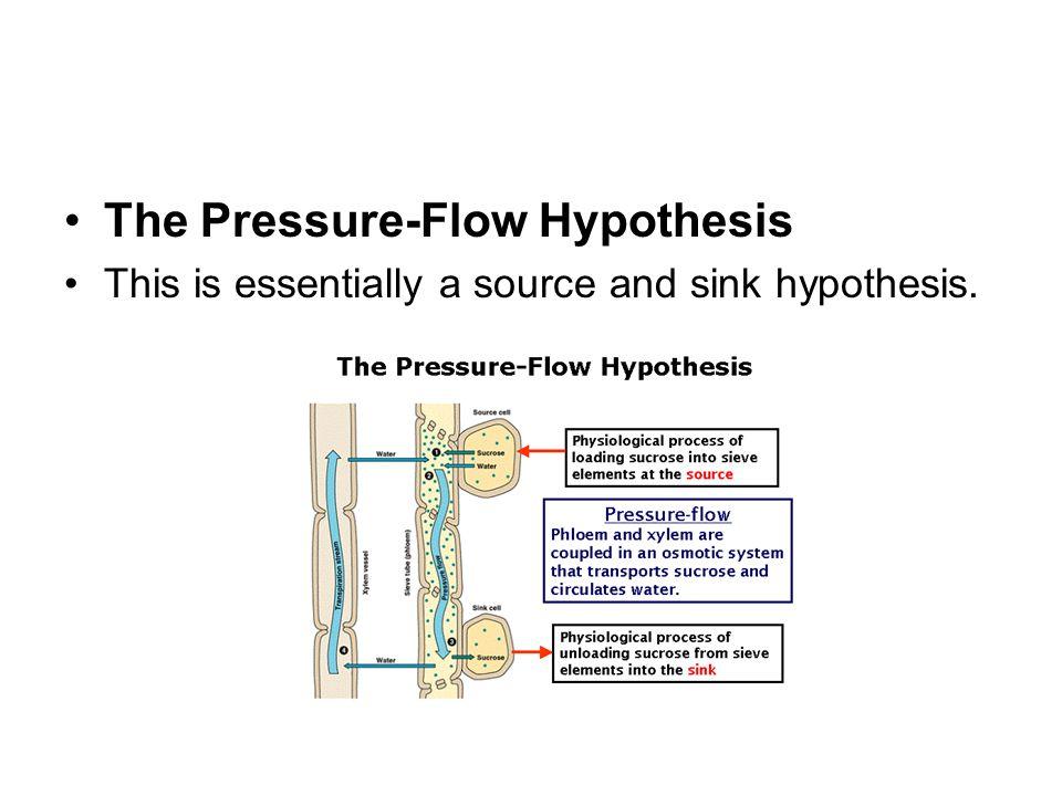 The Pressure-Flow Hypothesis