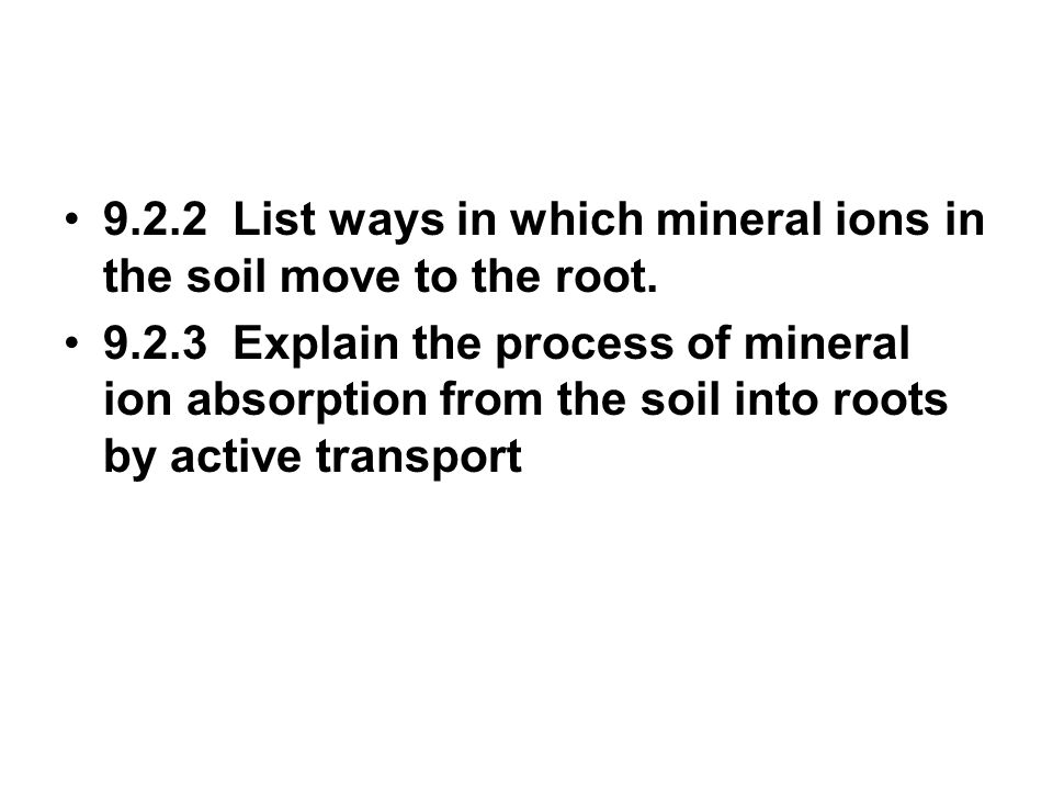 9.2.2 List ways in which mineral ions in the soil move to the root.