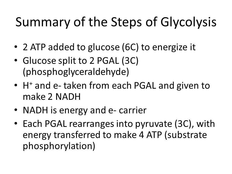 Summary of the Steps of Glycolysis