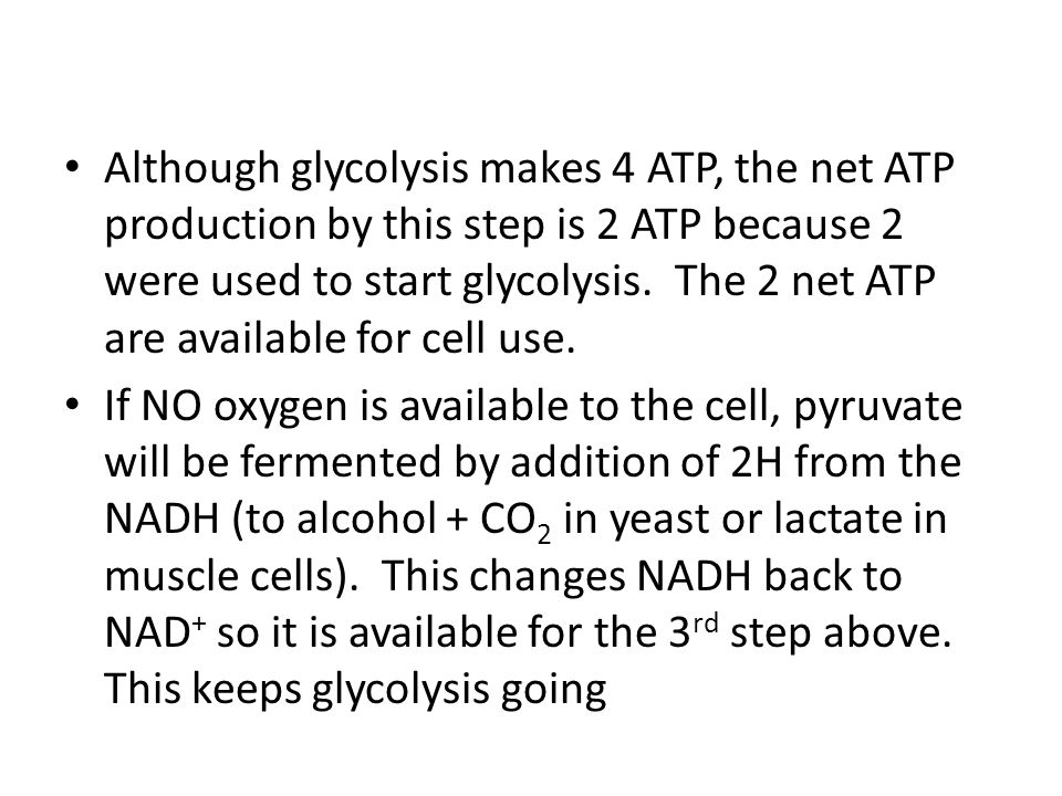 Although glycolysis makes 4 ATP, the net ATP production by this step is 2 ATP because 2 were used to start glycolysis. The 2 net ATP are available for cell use.