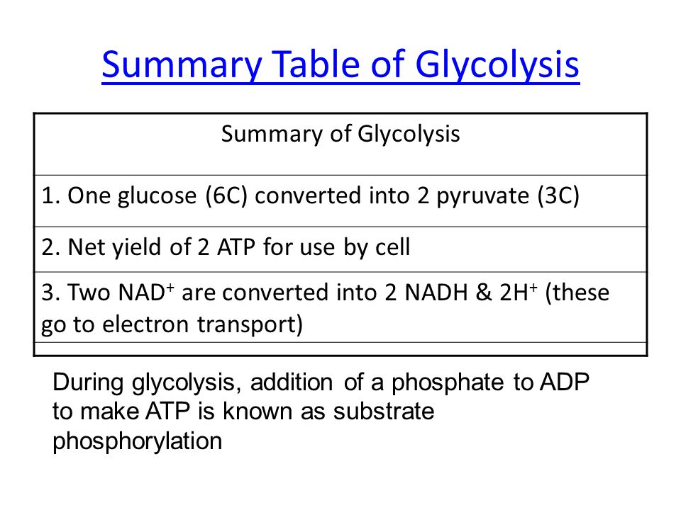 Summary Table of Glycolysis