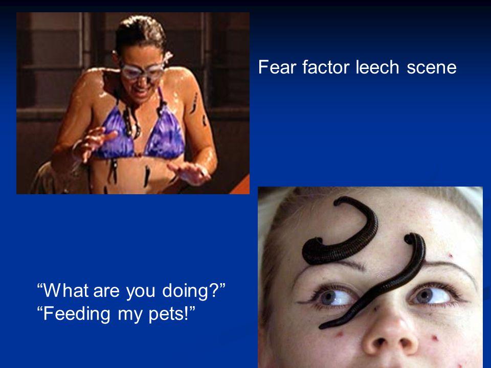 Fear factor leech scene