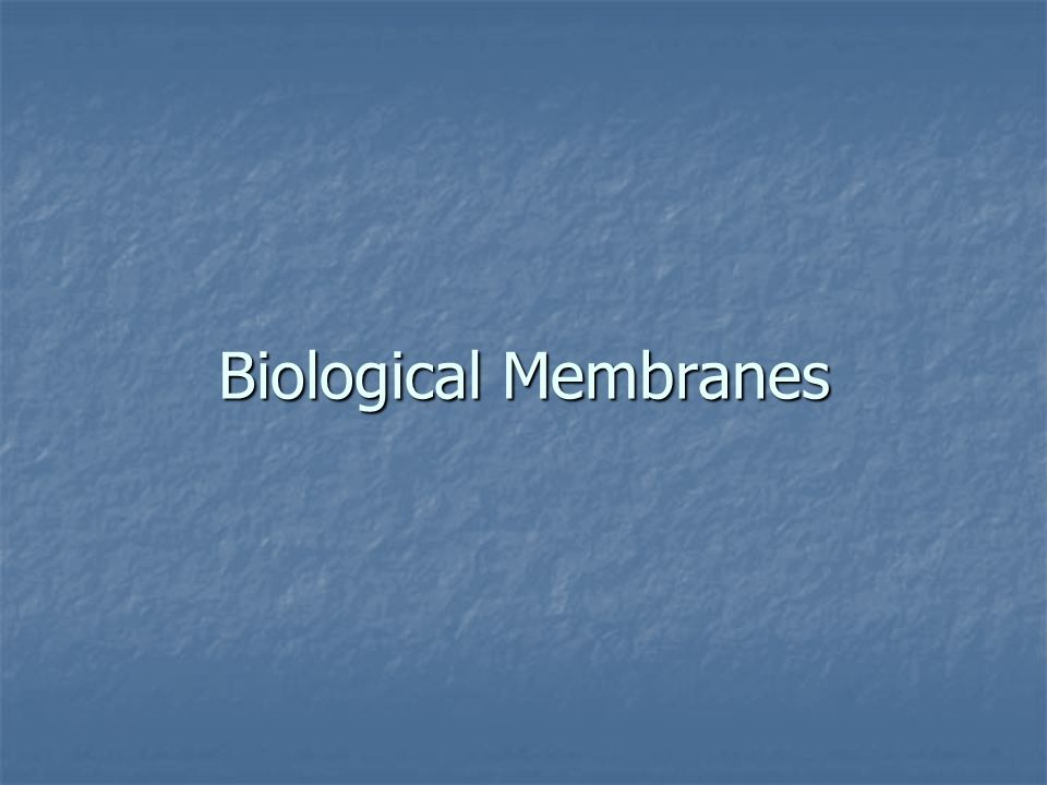 biological membranes Biotechnology catalyst early stage feasibility projects we are pleased to  confirm that uk research and innovation (ukri), the biotechnology and  biological.