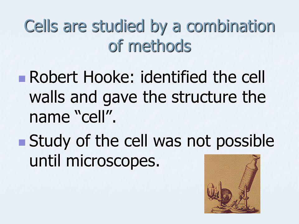 Cells are studied by a combination of methods