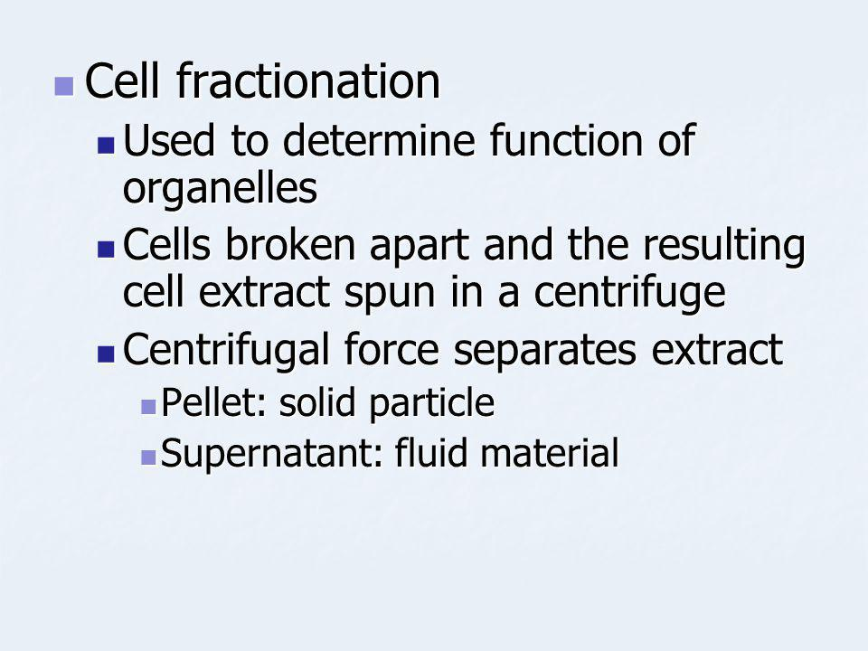 Cell fractionation Used to determine function of organelles
