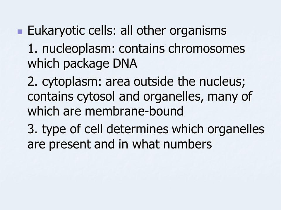 Eukaryotic cells: all other organisms