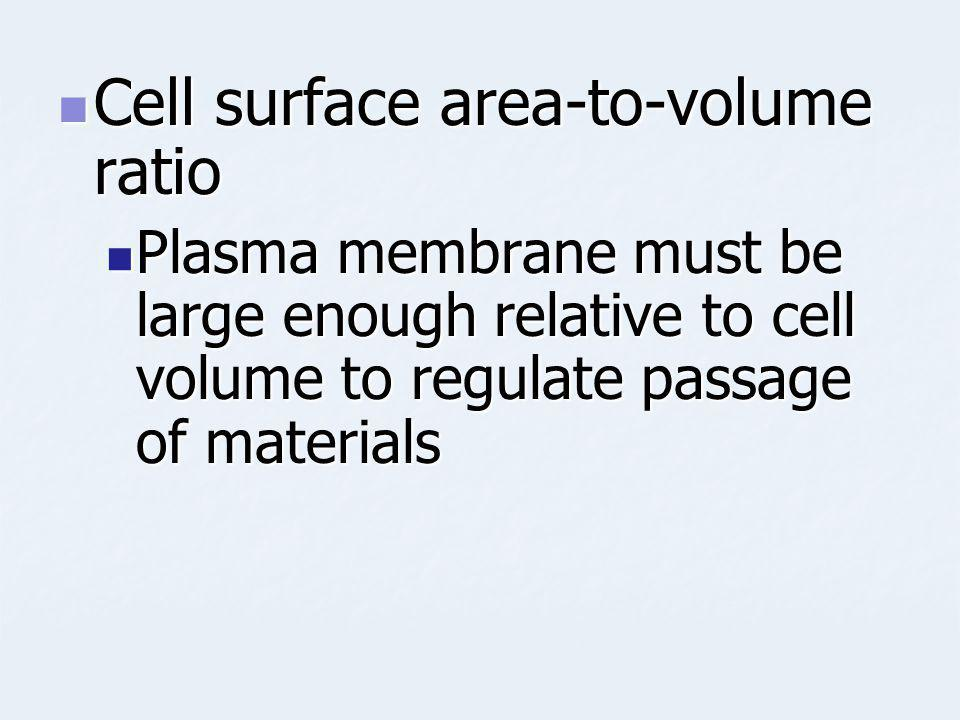 Cell surface area-to-volume ratio