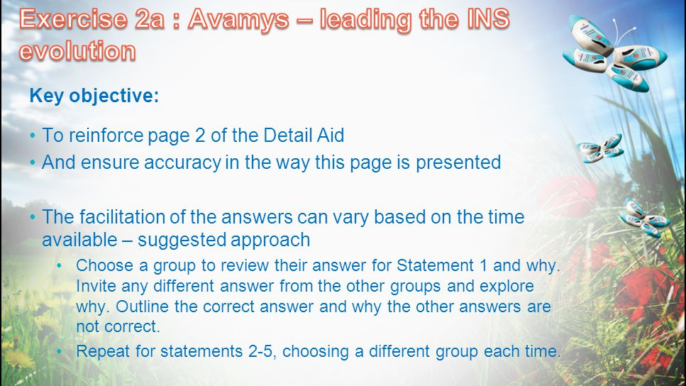 Exercise 2a : Avamys – leading the INS evolution