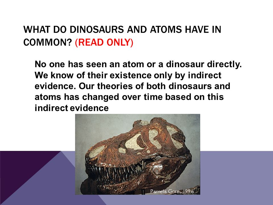 What do Dinosaurs and Atoms have in Common (read only)