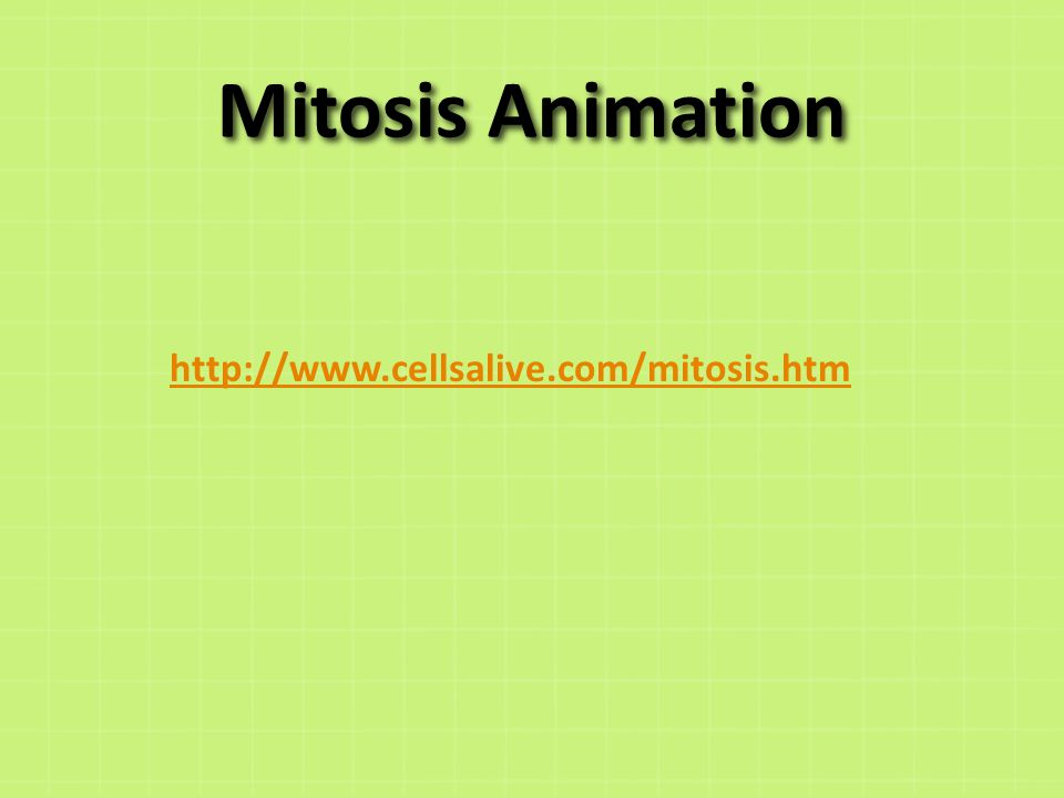 Cells alive mitosis cell parts worksheet answers