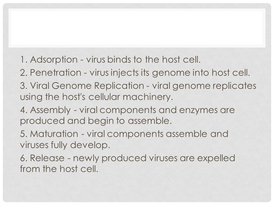 1. Adsorption - virus binds to the host cell. 2