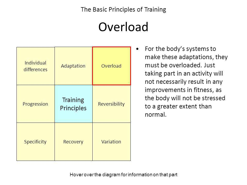 Overload The Basic Principles of Training