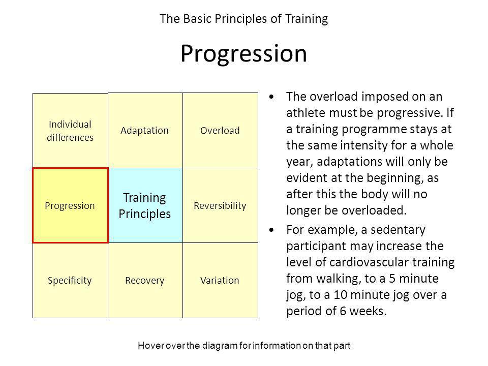 Progression The Basic Principles of Training