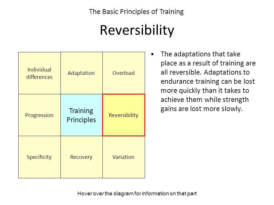 Reversibility The Basic Principles of Training