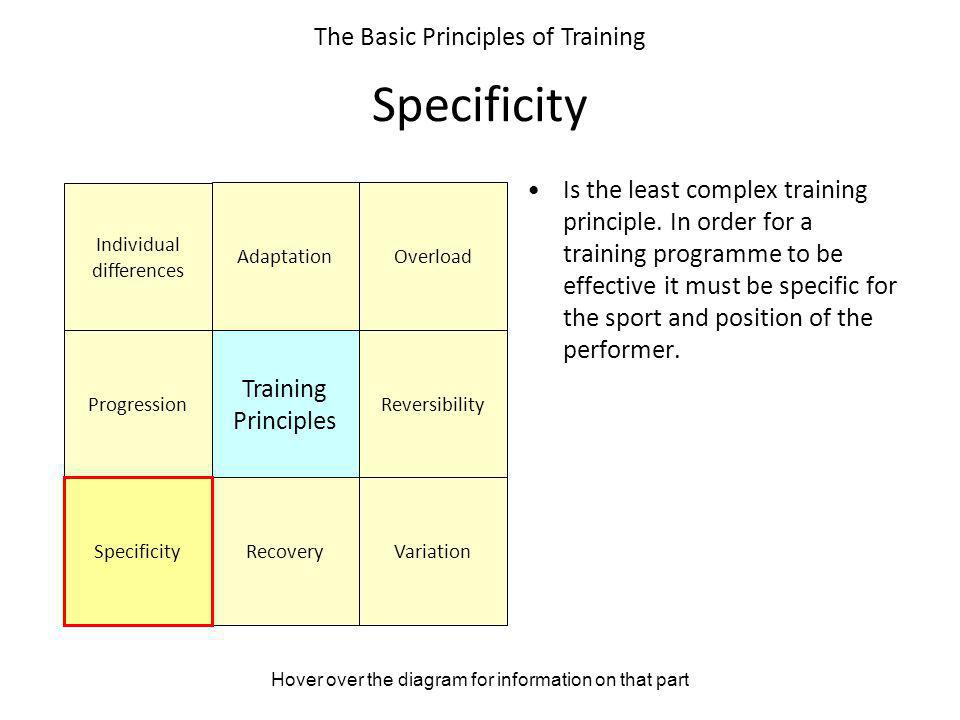 The Basic Principles Of Training Ppt Video Online Download