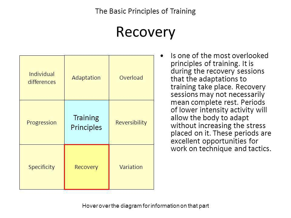 Recovery The Basic Principles of Training