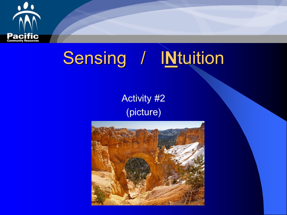 Sensing / INtuition Activity #2 (picture)