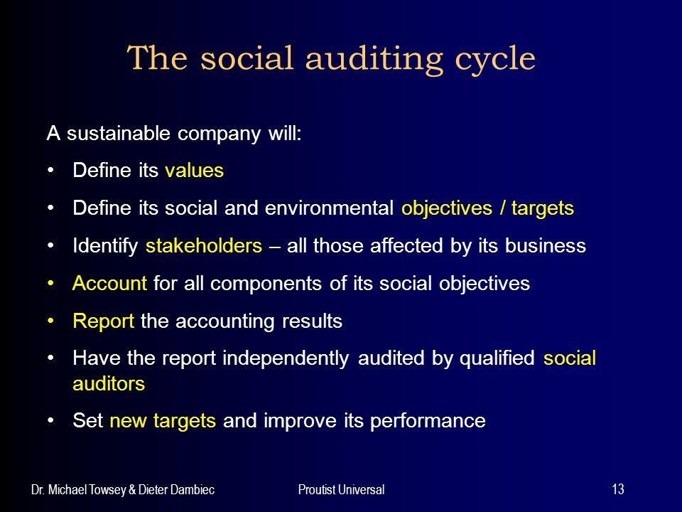 The social auditing cycle