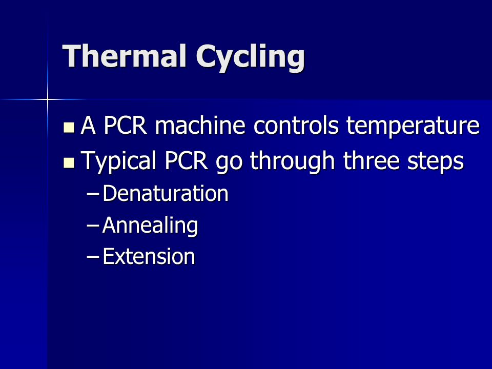 Thermal Cycling A PCR machine controls temperature