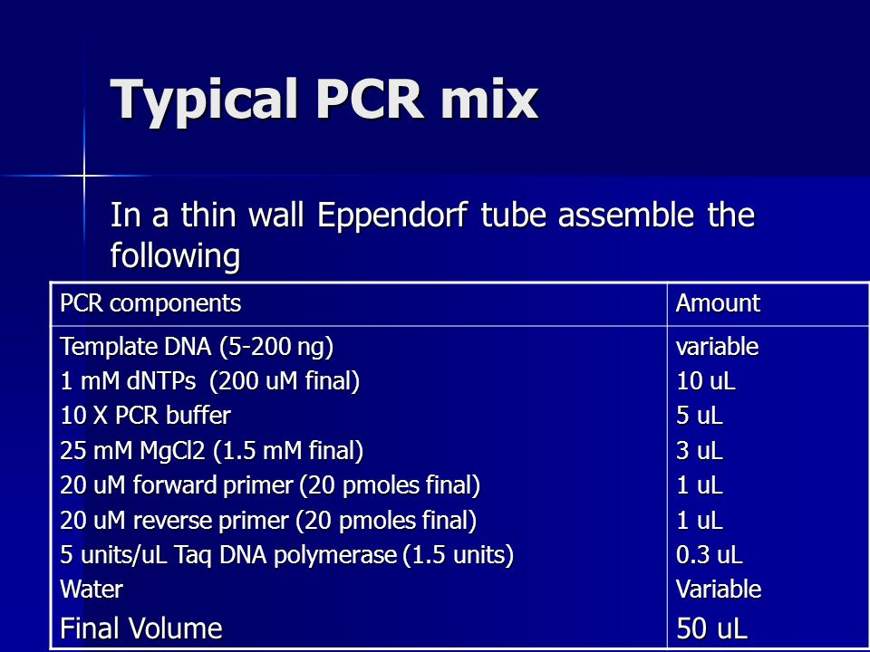 Typical PCR mix In a thin wall Eppendorf tube assemble the following