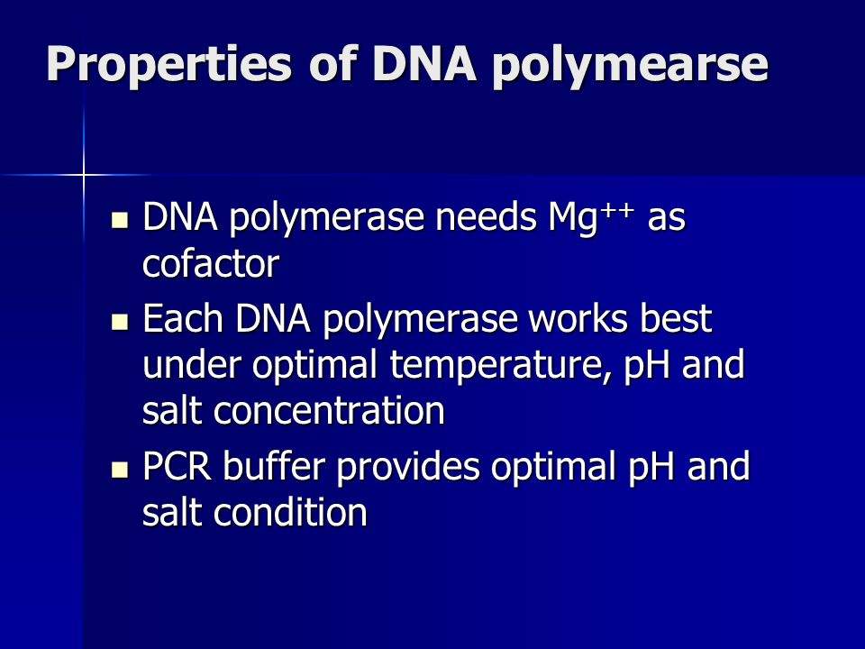 Properties of DNA polymearse