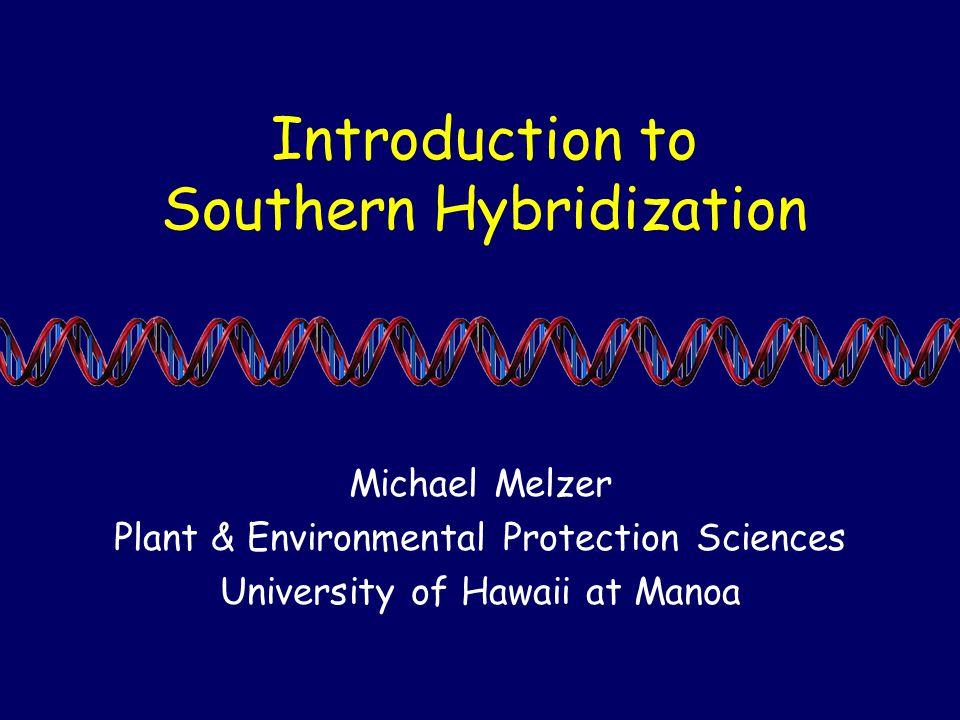 Introduction to Southern Hybridization