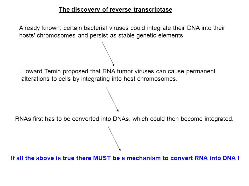 The discovery of reverse transcriptase