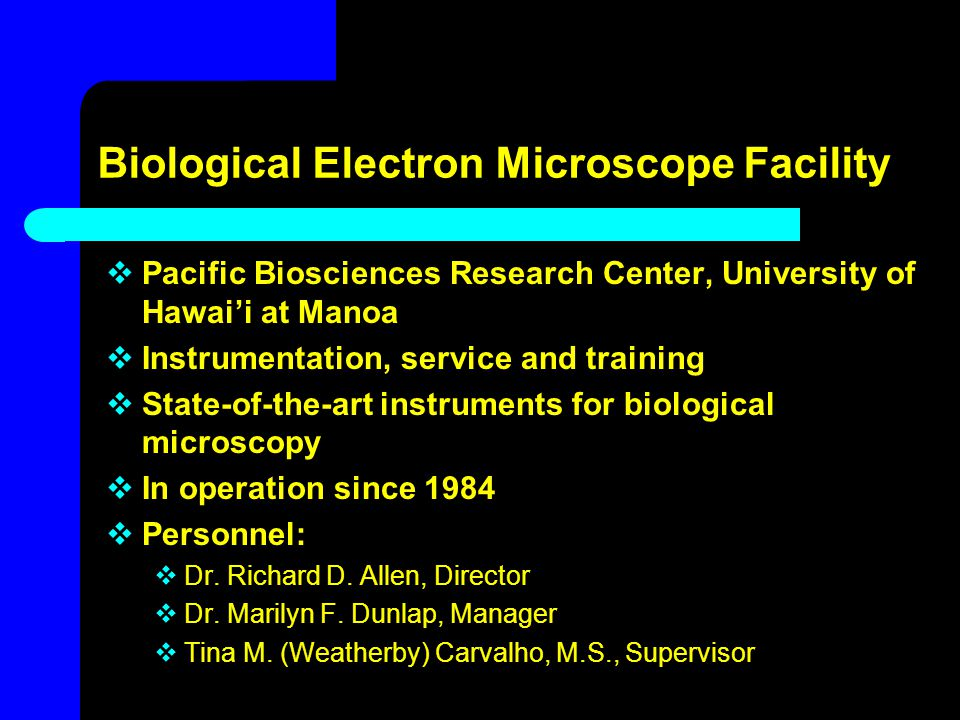 Biological Electron Microscope Facility