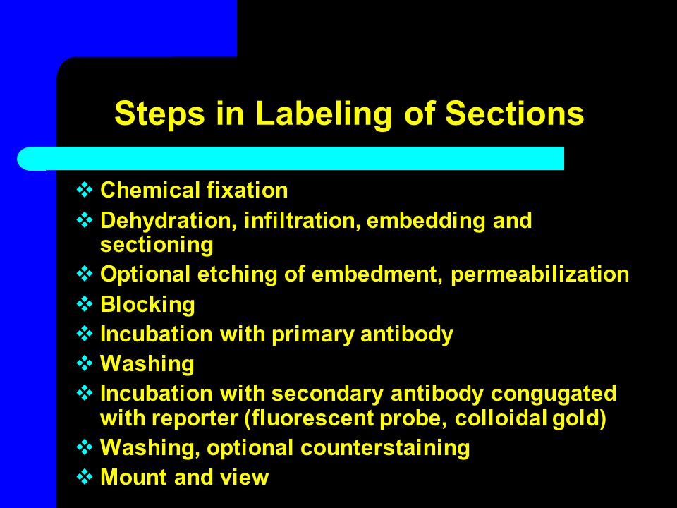 Steps in Labeling of Sections