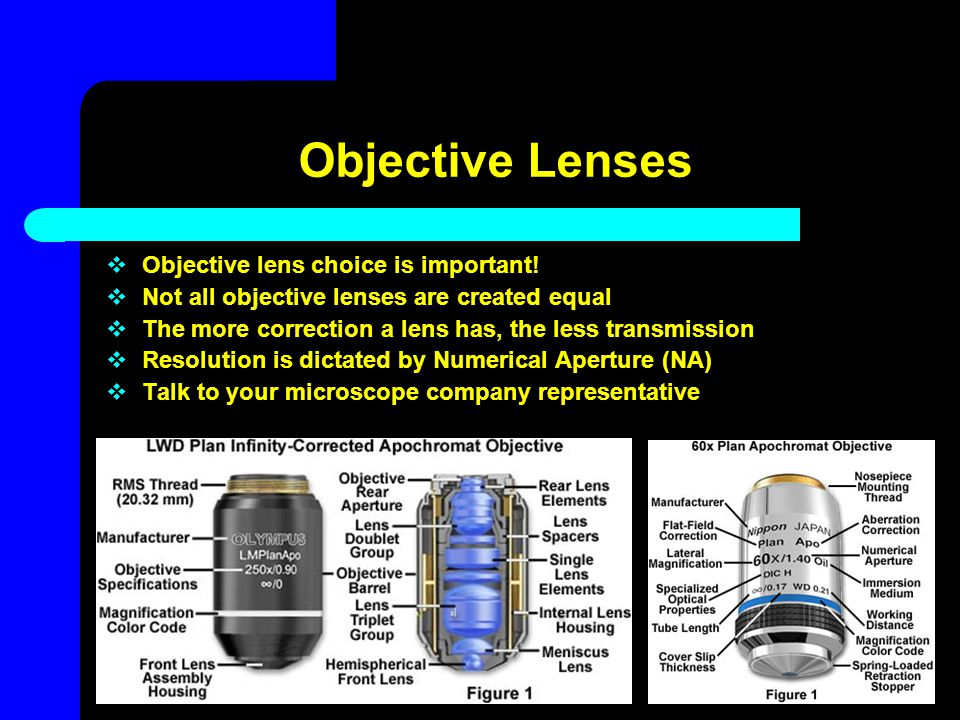 Objective Lenses Objective lens choice is important!