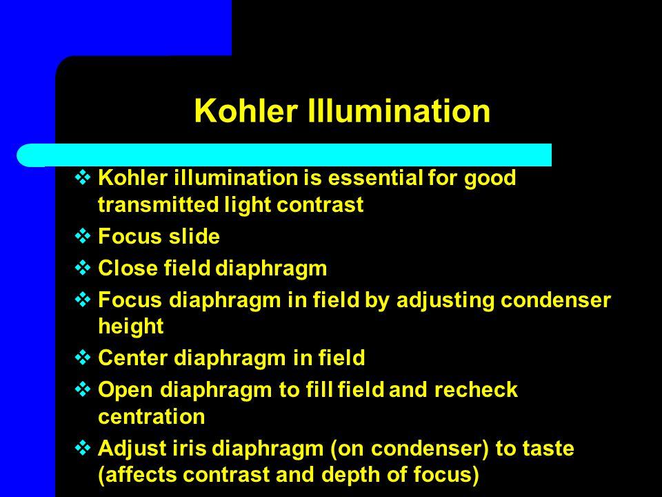 Kohler Illumination Kohler illumination is essential for good transmitted light contrast. Focus slide.