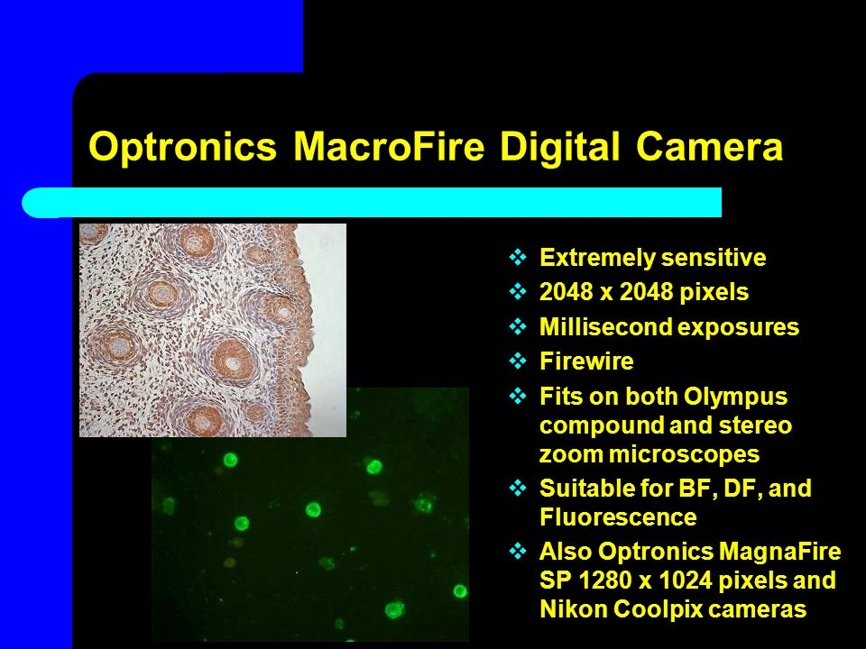 Optronics MacroFire Digital Camera