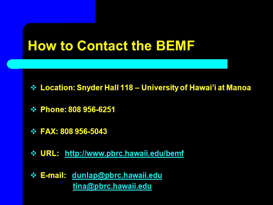 How to Contact the BEMF Location: Snyder Hall 118 – University of Hawai'i at Manoa. Phone: 808 956-6251.