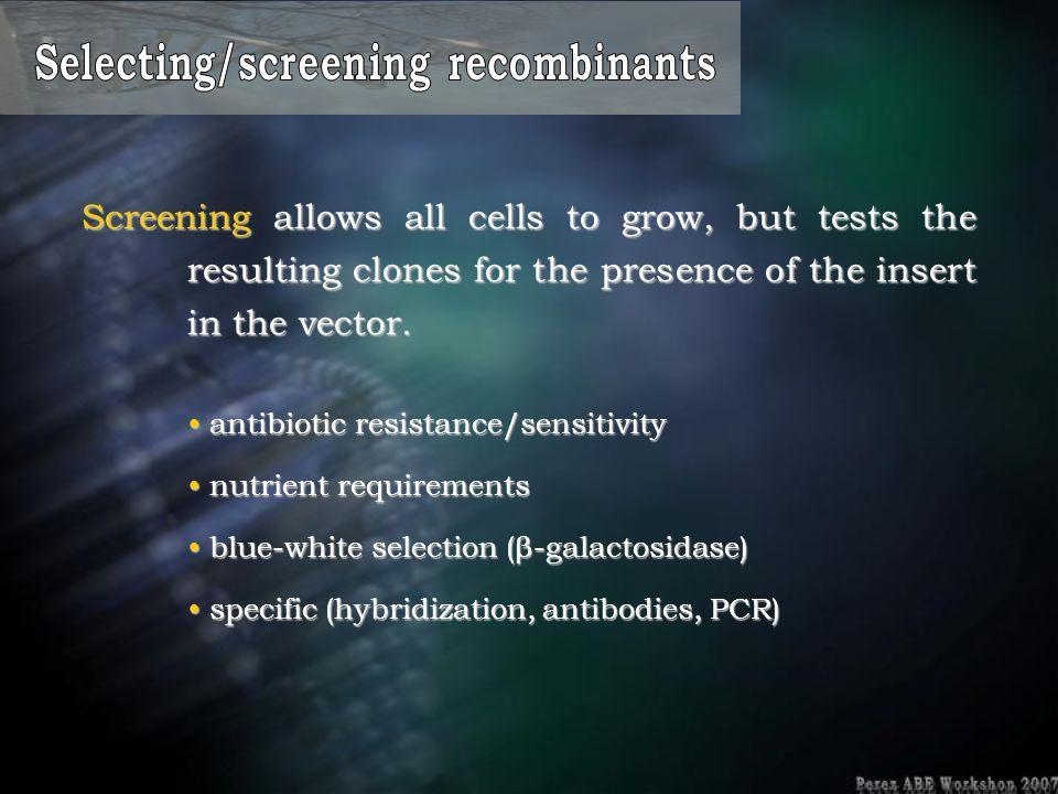 Selecting/screening recombinants