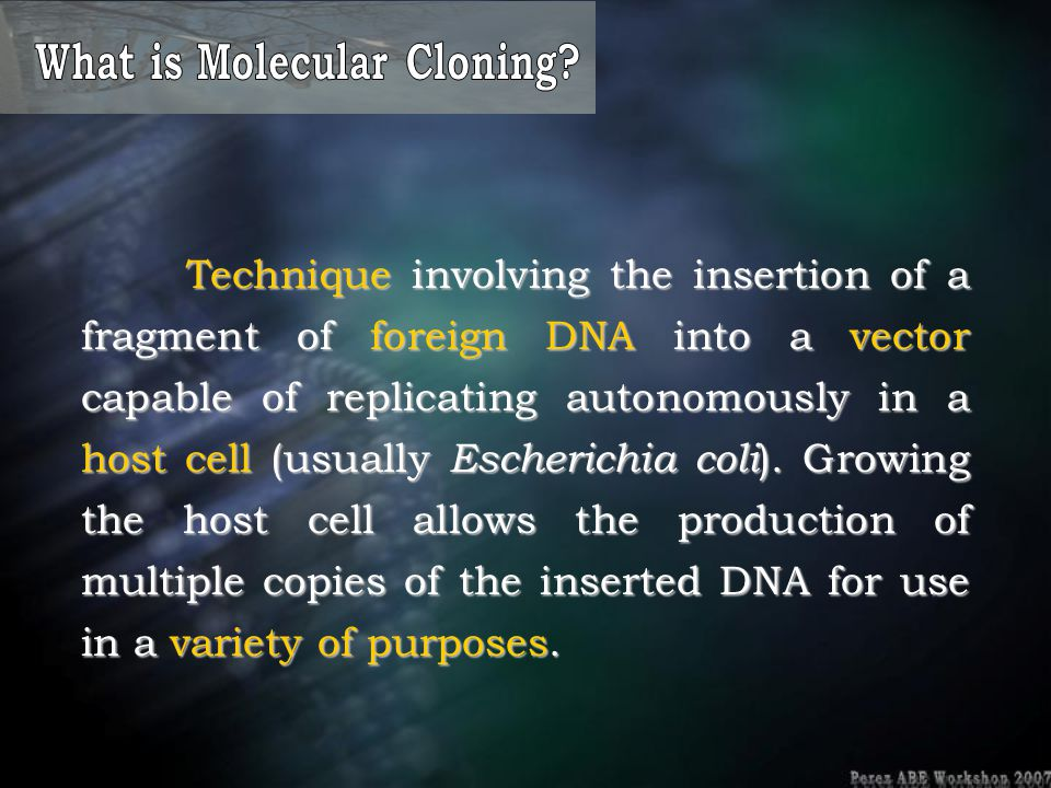 What is Molecular Cloning