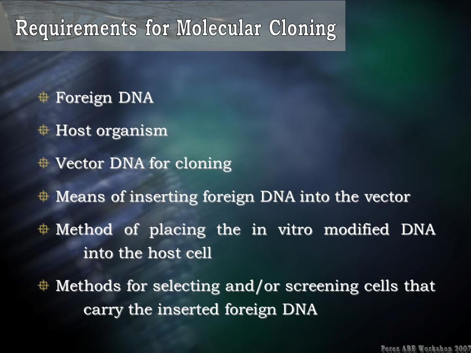 Requirements for Molecular Cloning
