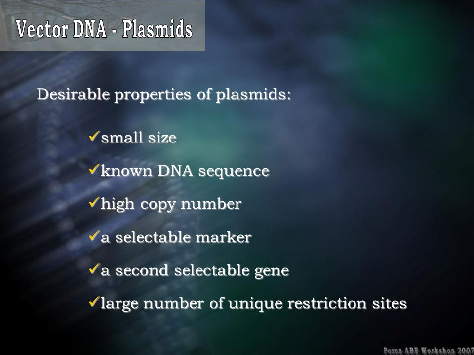 Vector DNA - Plasmids Desirable properties of plasmids: small size. known DNA sequence. high copy number.