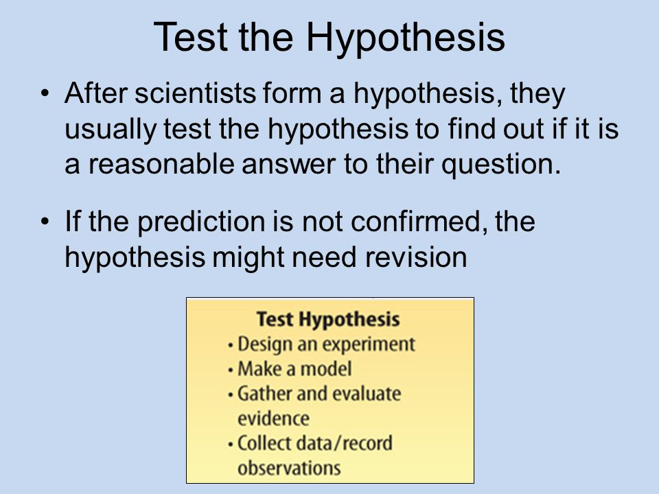 Test the Hypothesis After scientists form a hypothesis, they usually test the hypothesis to find out if it is a reasonable answer to their question.