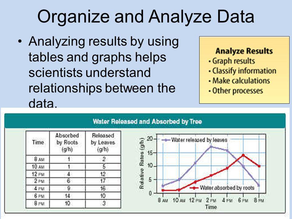 Organize and Analyze Data
