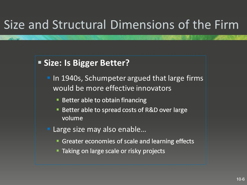 Size and Structural Dimensions of the Firm