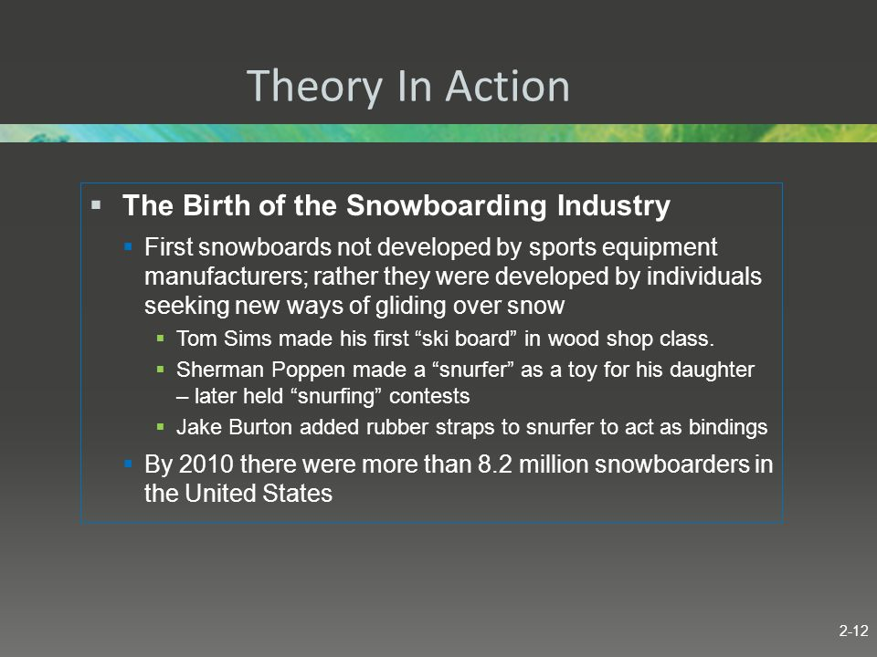 Theory In Action The Birth of the Snowboarding Industry