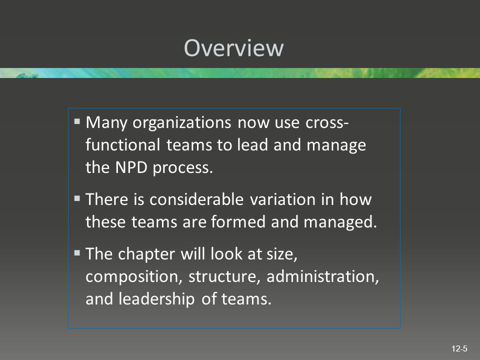 Overview Many organizations now use cross- functional teams to lead and manage the NPD process.