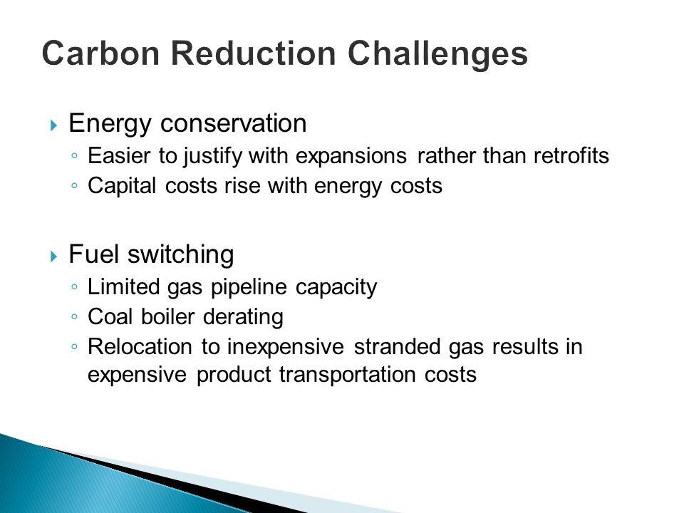 Carbon Reduction Challenges