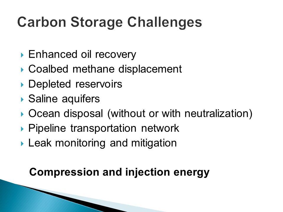 Carbon Storage Challenges