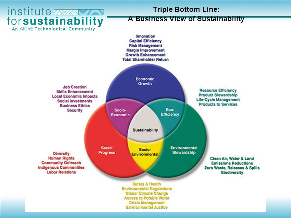 Triple Bottom Line: A Business View of Sustainability