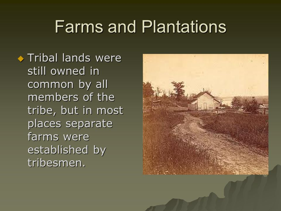 Farms and Plantations