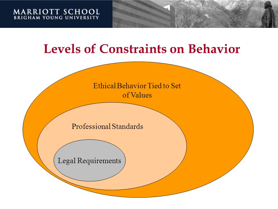 Levels of Constraints on Behavior