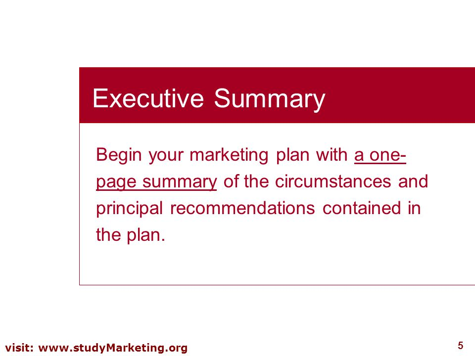 Executive Summary Begin your marketing plan with a one-page summary of the circumstances and principal recommendations contained in the plan.